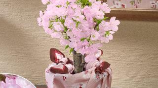 彼女が喜ぶ『日比谷花壇』桜鉢 ホワイトデー プレゼント 2018